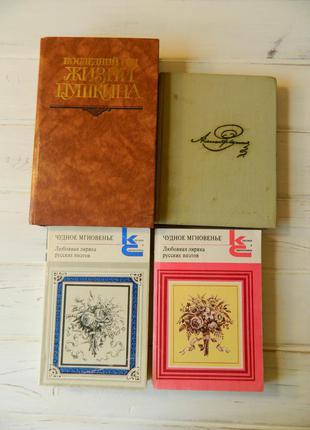 Пушкин русская классика поэзия стихи ахматова лермонтов блок сборники на подарок