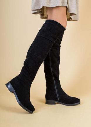 Черные сапоги ботфорты замшевые демисезонные