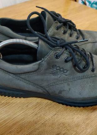 Ecco кроссовки ботинки туфли на шнурках кросівки туфлі