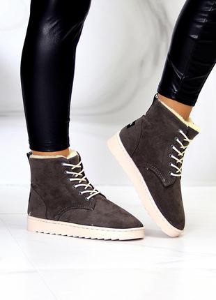 Модные замшевые женские темно серые зимние ботинки угги на шнуровке