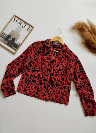 Шикарная блуза-пиджак primark