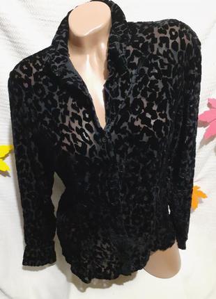 Блуза блузка рубашка лео леопардовая бархатная прозрачная бархат велюровая велюр шелковая шелк