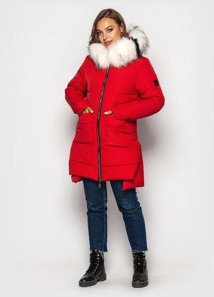 Беспл. доставка зимняя куртка 4 цвета, р. 44, 46, 48, 50, 52, 54