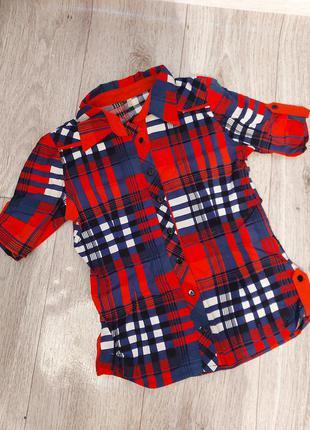 Рубашка, блузка с короткими рукавами