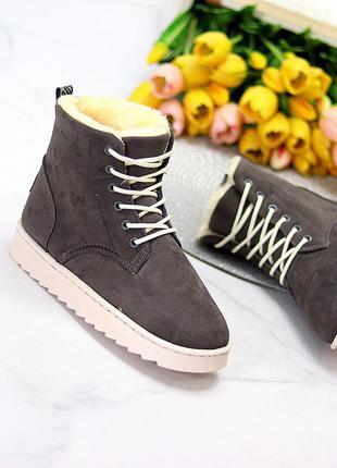 Модные замшевые женские темно серые зимние ботинки угги на шнуровке 11653