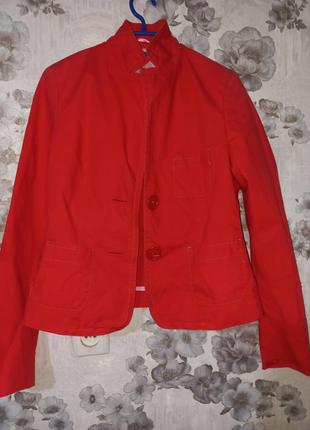 Алый пиджак