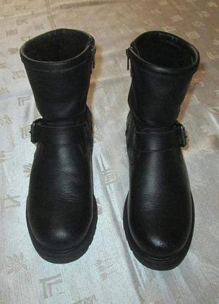 Кожаные зимние ботинки на цегейке panama jack р. 38