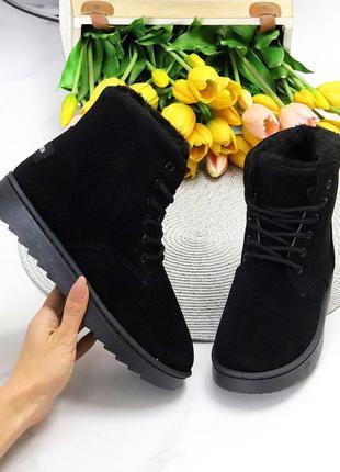 Модные замшевые женские черные зимние ботинки угги на шнуровке 11650