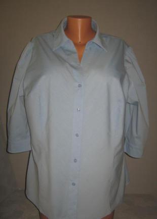 """""""одяг для пишної краси"""" 62/64/66р в идеале блуза офисная блузка рубашка 62% котон"""