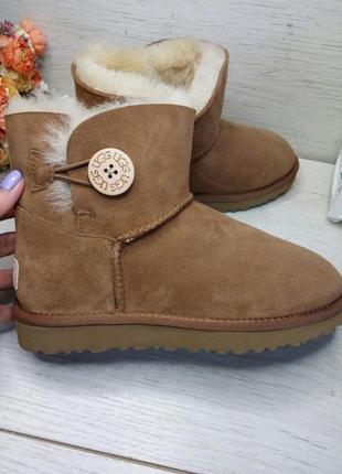 Ugg mini bailey button ii brown. угги коричневые с пуговицей 36-41