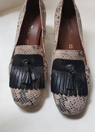 Кожаные туфли next signature, туфли змеиная кожа, кожаные туфли на квадратном каблуке, брендові шкіряні туфлі