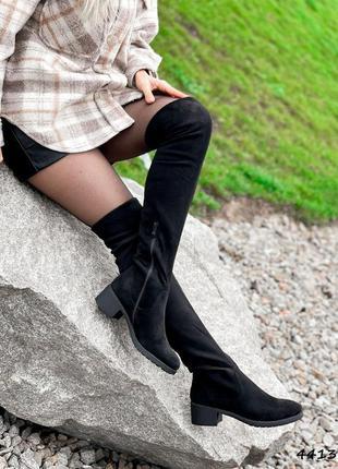 Сапоги ботфорты женские connу черные замша
