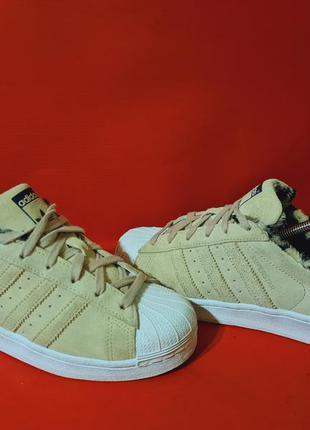 Adidas superstar w 39р. 25см кроссовки женские