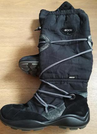 Сапоги сапожки ботинки ecco 38р (24,5см)