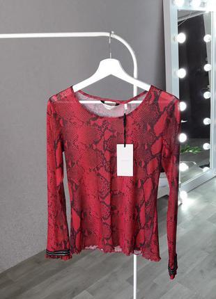 Блуза | сетка | в змеиный принт |