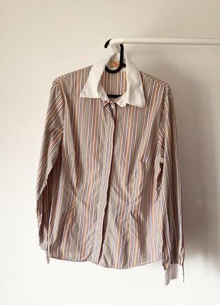 R.m.williams бавовняна сорочка в смужку