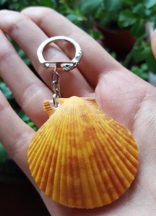 Брелок для ключей натуральная ракушка море