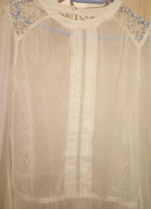 Блуза, блузка miss selfridge