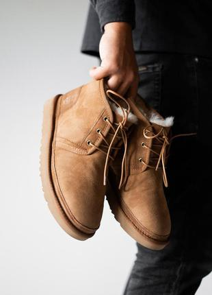 Мужские ботинки ugg neumel chestnut