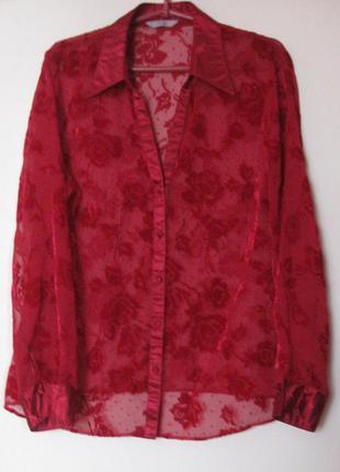 Блуза красная в велюровых цветах