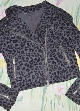 Куртка ветровка пиджак жакет