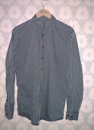 Мужская рубашка в полоску от pierre cardin