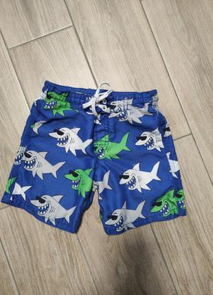 Пляжные шорты плавки с акулами