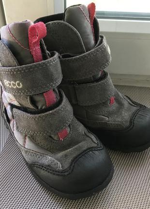 Зимние ботинки ессо gore tex 26р