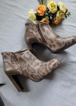 Ботильоны туфли кожа каблук леопард