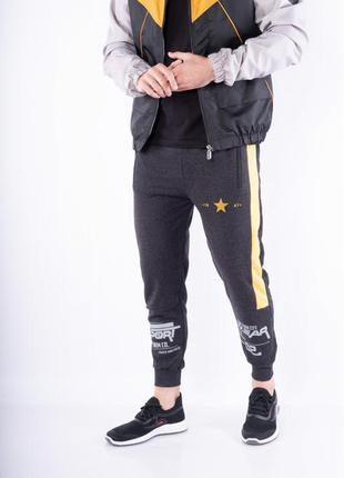 Брюки спортивные 627f024, штаны джоггеры