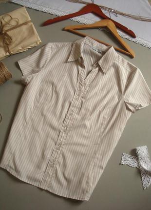 Натуральная белая рубашка с коротким рукавом xxl