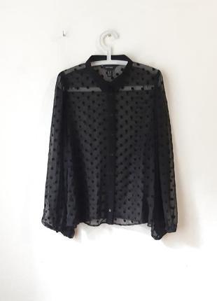 Красивая шифоновая рубашка блуза
