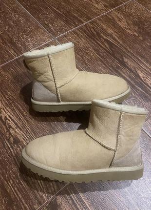 Зимние ботинки угги р-39