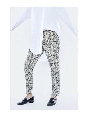 Тёплые брюки штаны zara с змеиным принтом