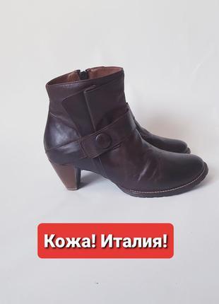Кожаные ботильоны коричневые итальянские ботинки  gidigio 41