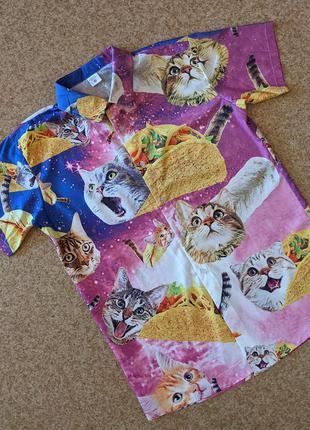 Рубашка taco cats