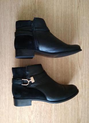 Стильные кожаные фирменные ботинки pavers демисезонные