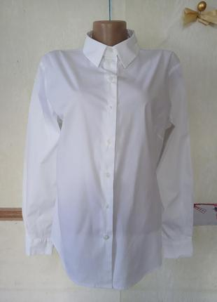 Белая базовая рубашка р.16 hobbs