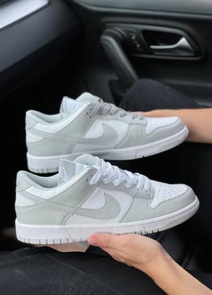 Nike dunk photon