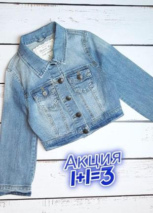 1+1=3 фирменная женская джинсовая куртка джинсовка denim co оригинал, размер 42 - 44