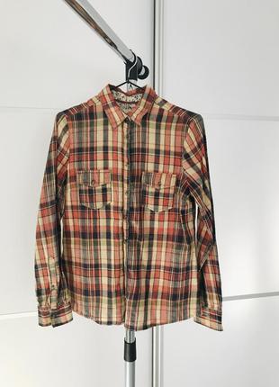 Рубашка в клетку, рубашка в клітинку, коричнева рубашка.
