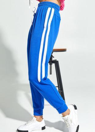 Синие трикотажные брюки с лампасами