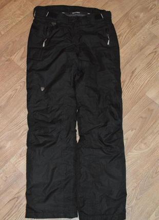 Термобрюки лыжные штаны брюки iguana (германия)1 фото