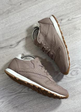 Reebok classic кожаные кроссовки на осень