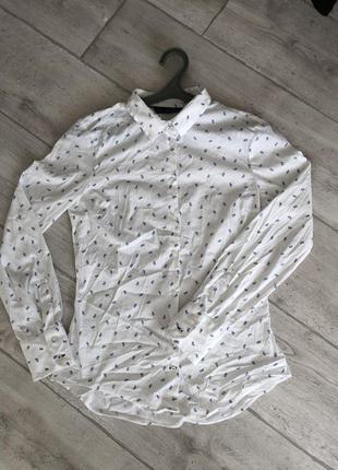 Рубашка zara. в ідеалі