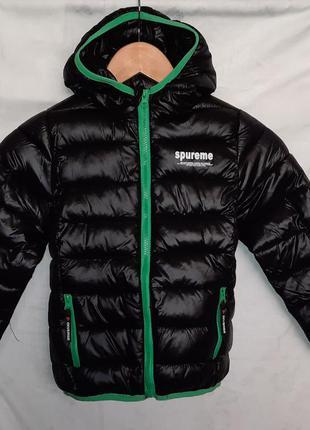 Демисезонная курточка для мальчика, бренд blue motion, германия