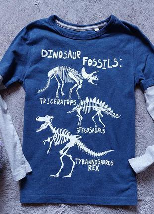 Реглан в динозавры для мальчика