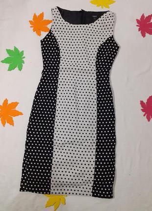 Платье в горох горошек футляр классика классическое деми демисезонное натуральное вискоза хлопок