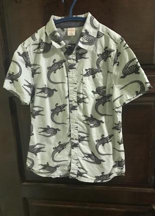 Рубашка gymboree, размер м (7-8), рост 134-140. мята, крокодил 🐊.100% хлопок.