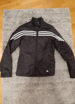 Куртка, спортивка adidas